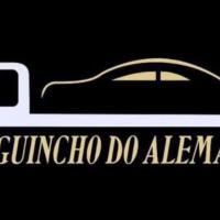 AUTO SOCORRO ALEMAO - Empresa de Transporte de Veiculos