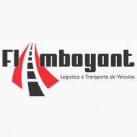 Flamboyant Transportes Ltda - Empresa de Transporte de Veiculos